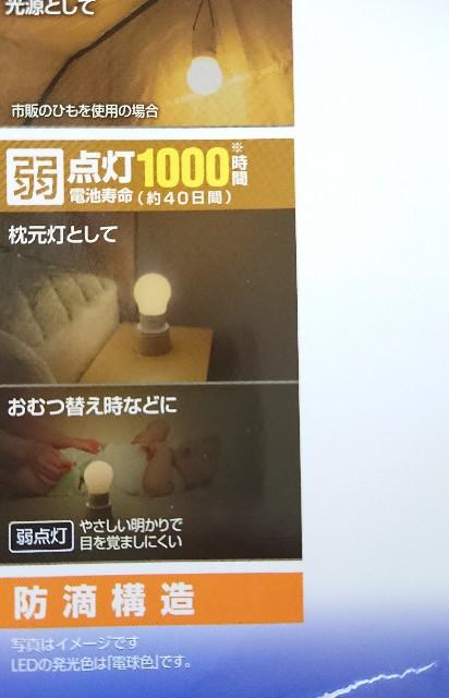 f:id:shokubutsuzoku:20190204175810j:plain