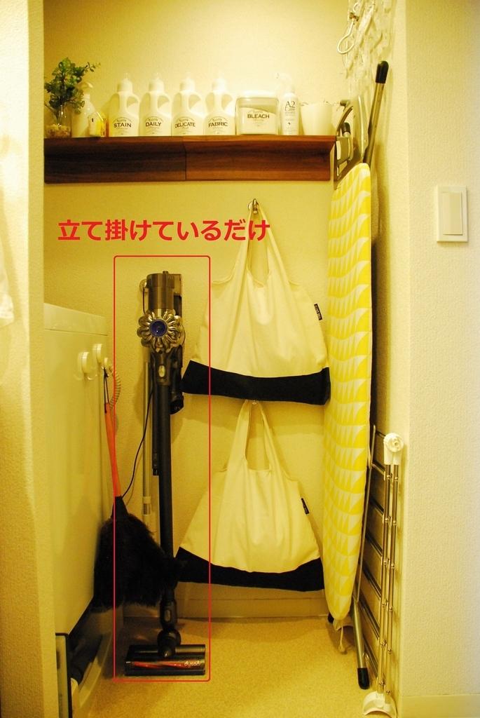 f:id:shokubutsuzoku:20190221233149j:plain