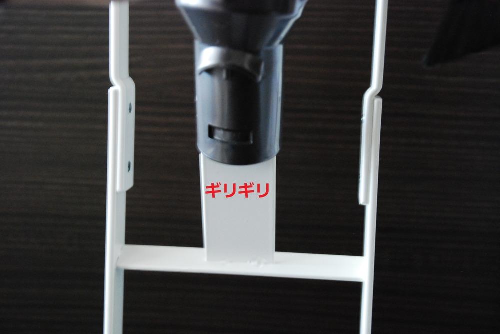f:id:shokubutsuzoku:20190221233209j:plain