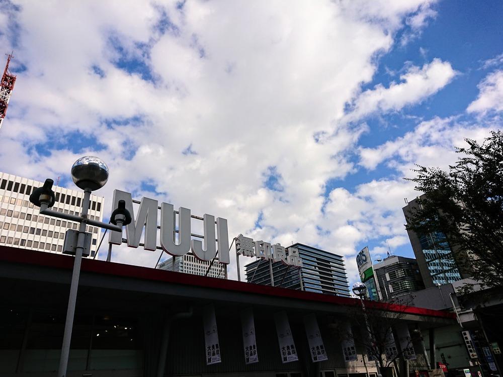 f:id:shokubutsuzoku:20190312185732j:plain