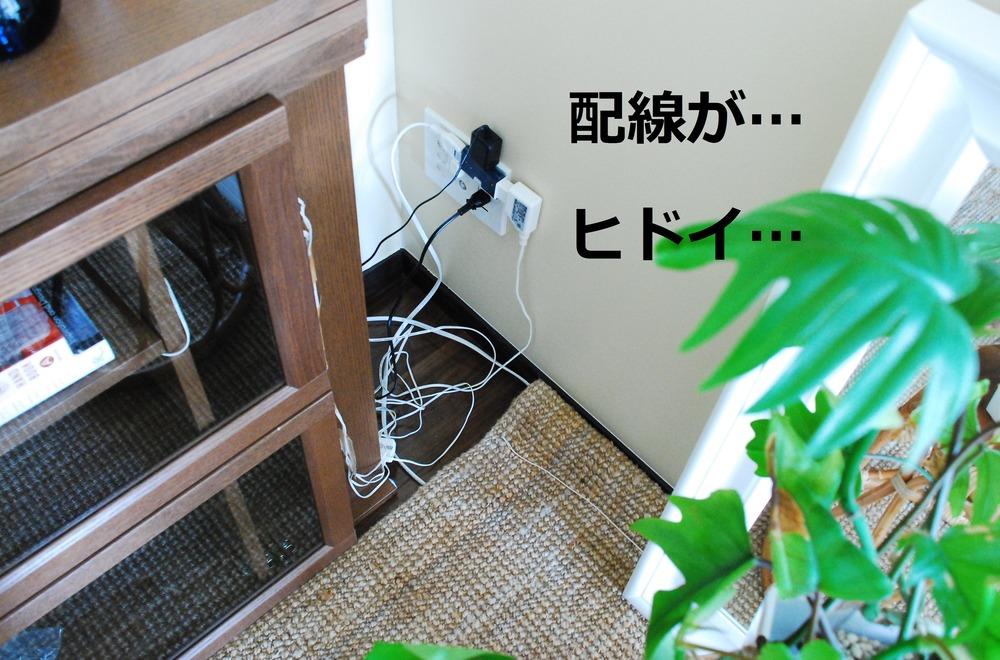 f:id:shokubutsuzoku:20190313195723j:plain