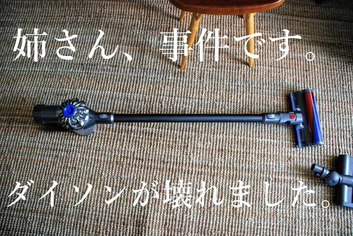 f:id:shokubutsuzoku:20190711102845j:plain