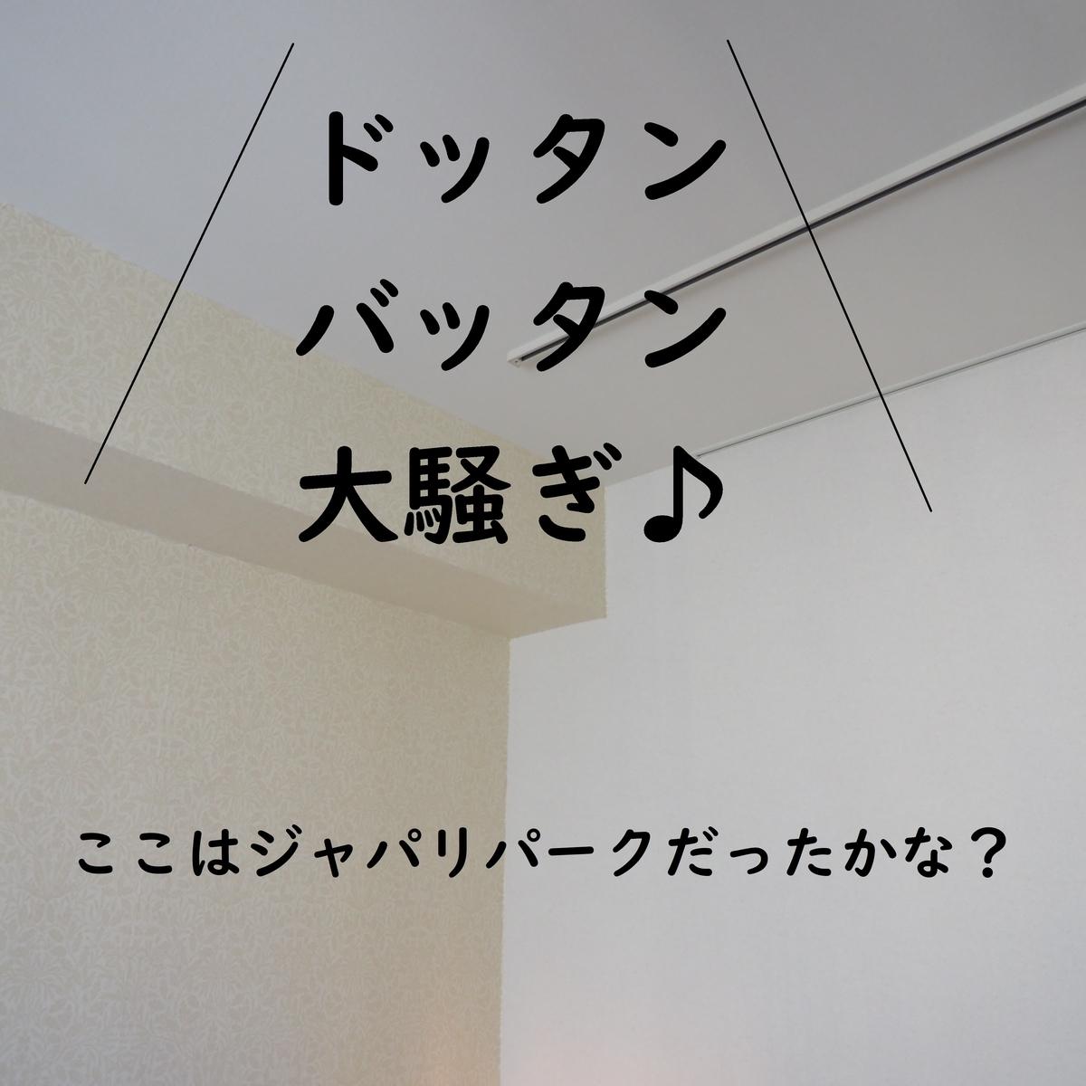 f:id:shokubutsuzoku:20190801180216j:plain