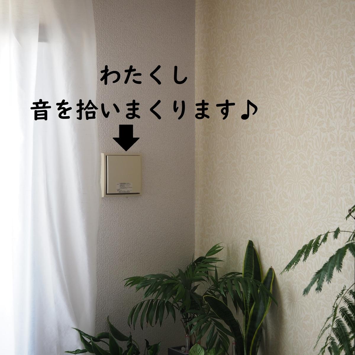 f:id:shokubutsuzoku:20190801180305j:plain