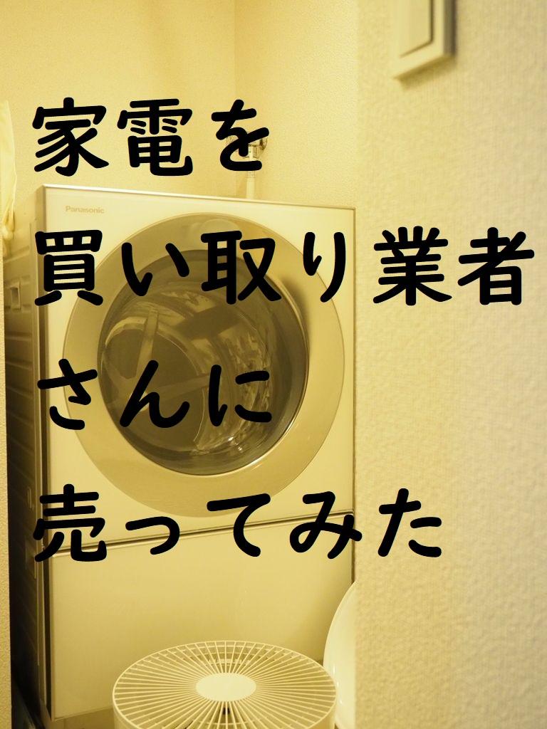 f:id:shokubutsuzoku:20200226154607j:plain