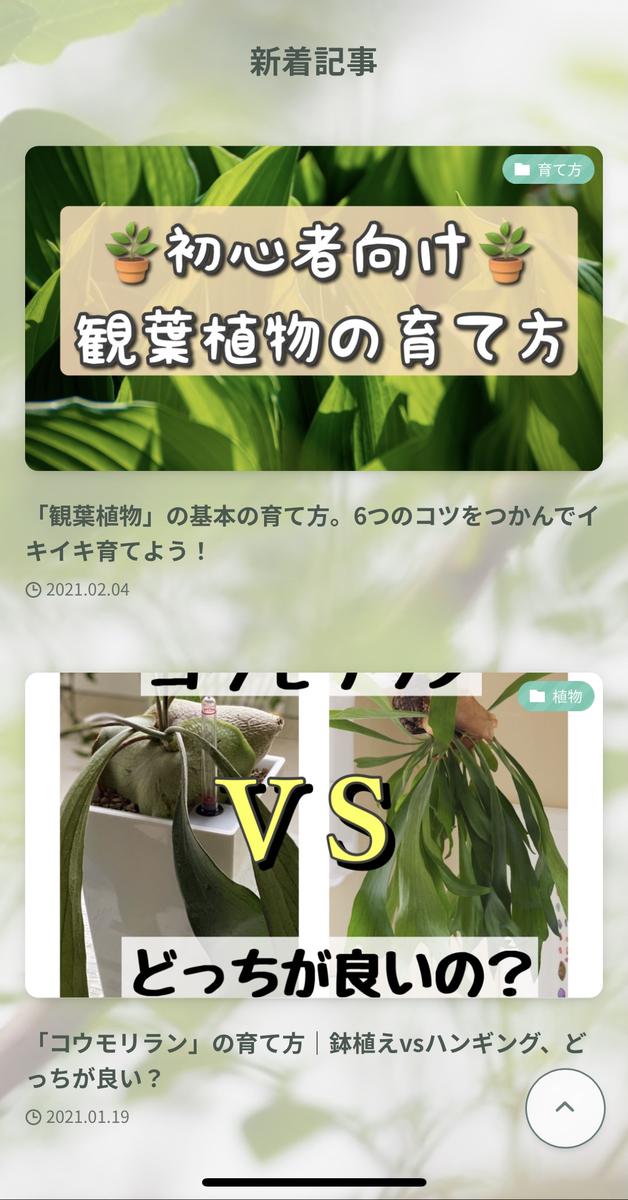 f:id:shokubutsuzoku:20210205185232j:plain