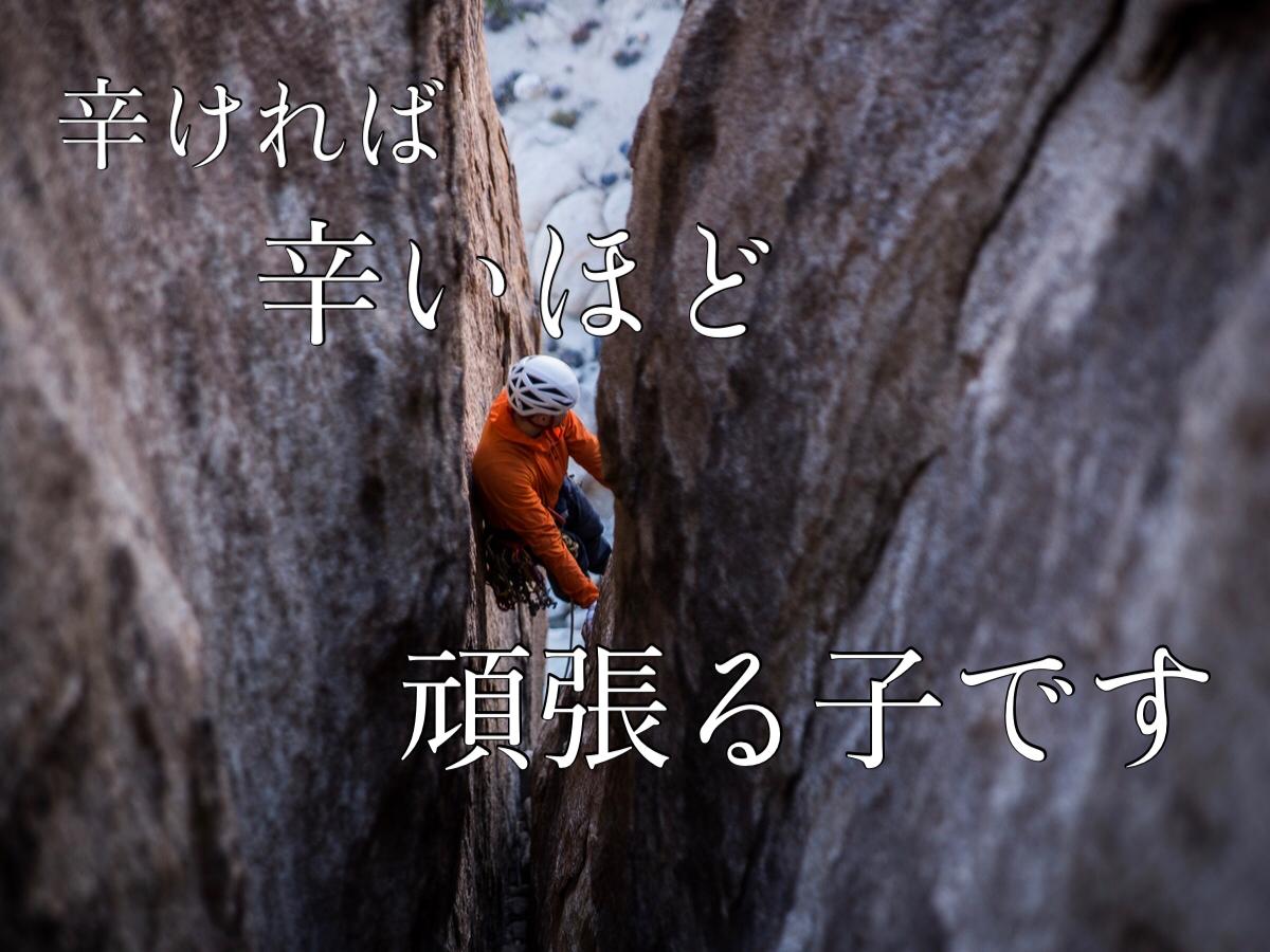 f:id:shokubutsuzoku:20210222132754j:plain