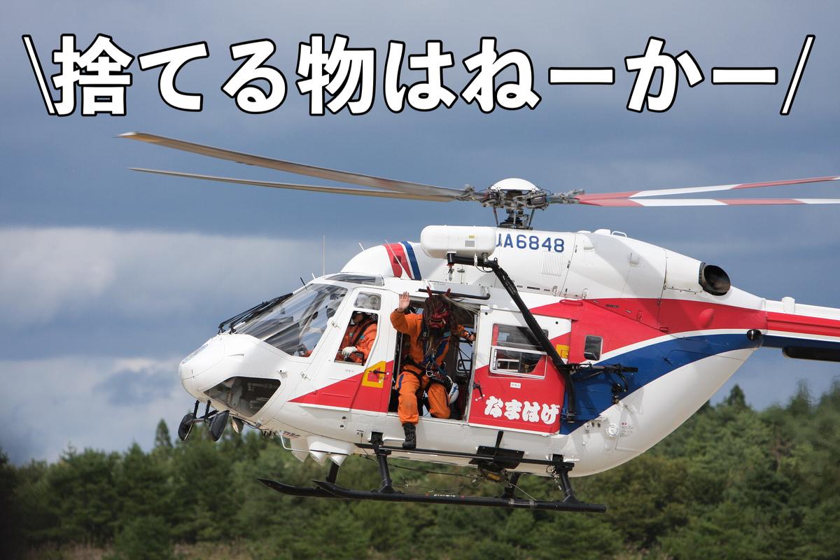 f:id:shokubutsuzoku:20210603014315j:plain