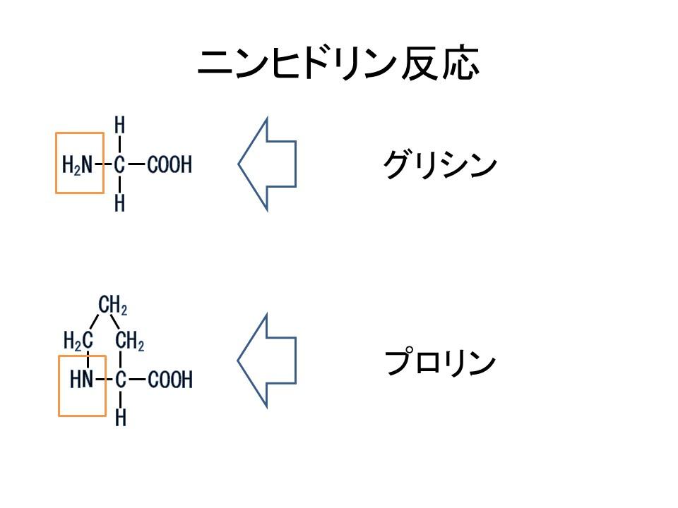 反応 原理 ビウレット