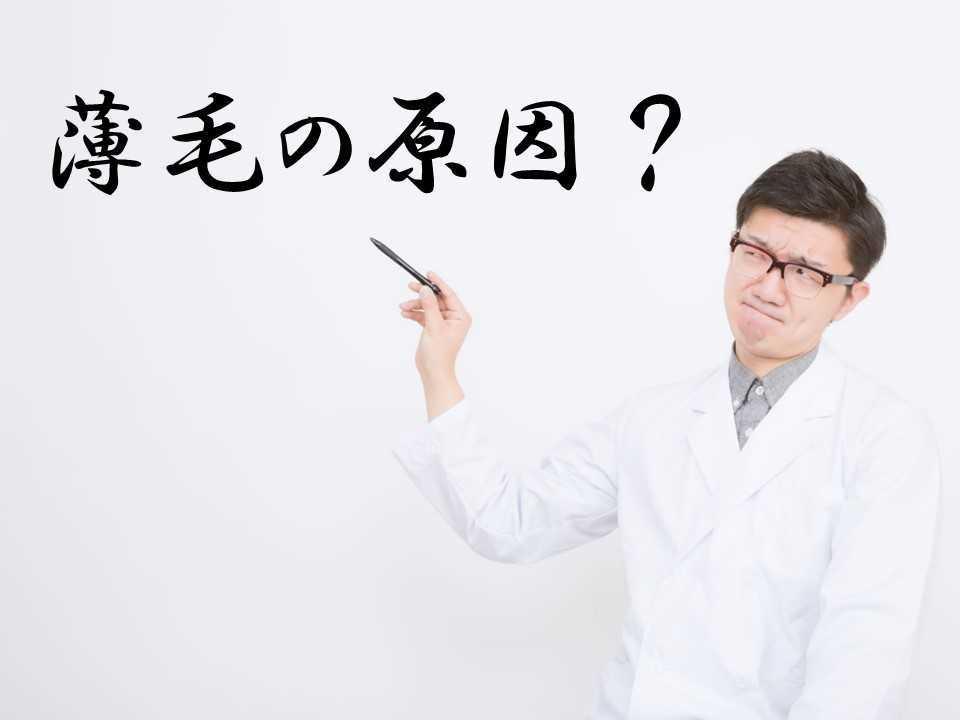 f:id:shokumou:20190310111926j:plain