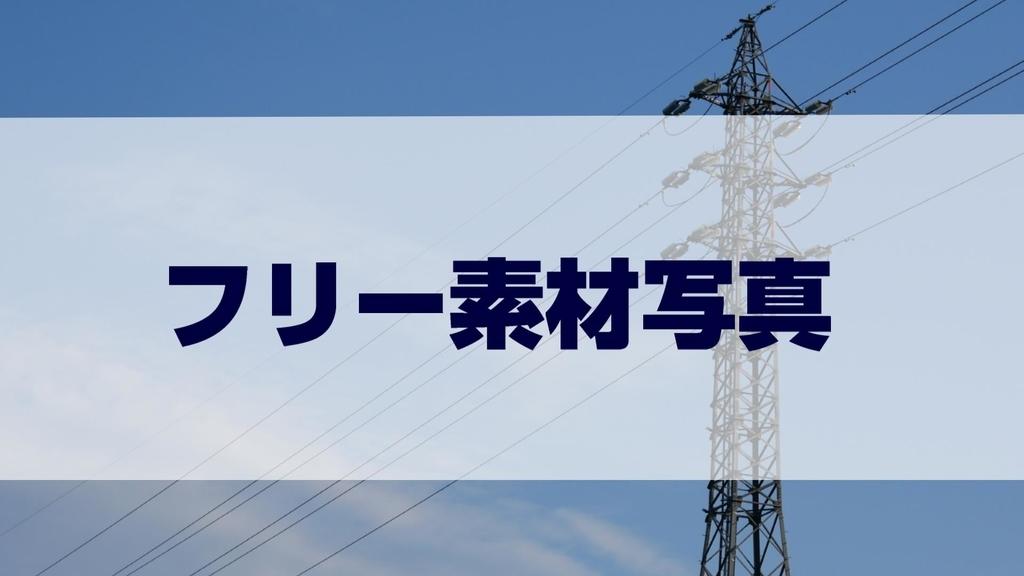 f:id:shokuneko:20190108161528j:plain