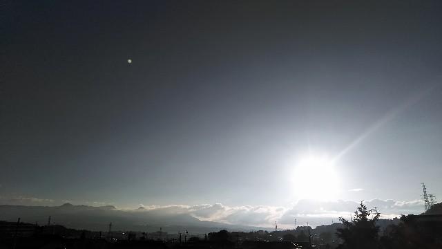 f:id:shokuneko:20190119233231j:plain