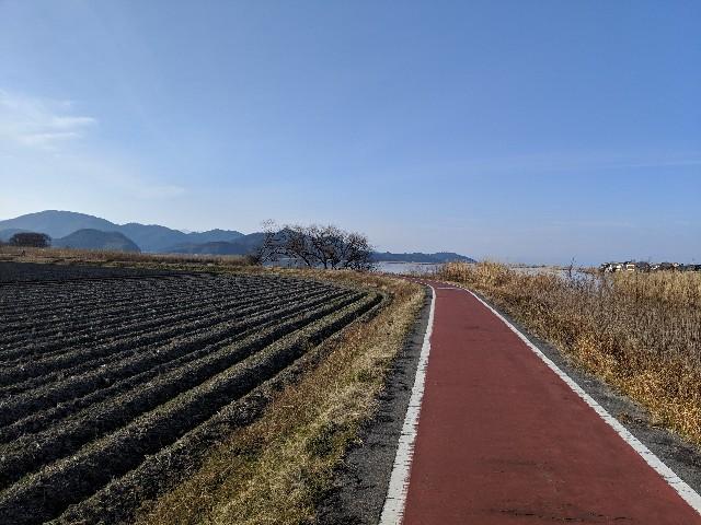f:id:shokutama:20190219104616j:image