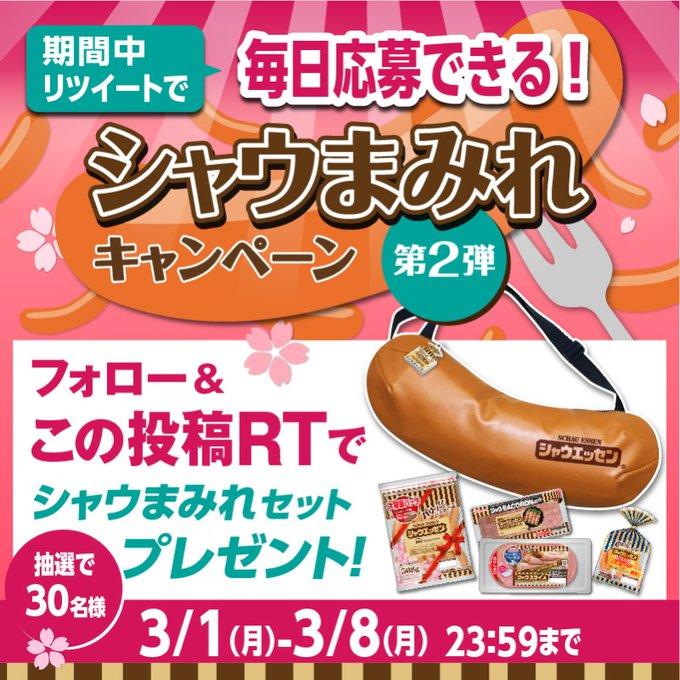 ニッポンハム シャウまみれキャンペーン 第2弾