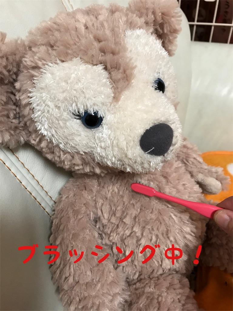 f:id:shopkeibun:20161231191125j:image