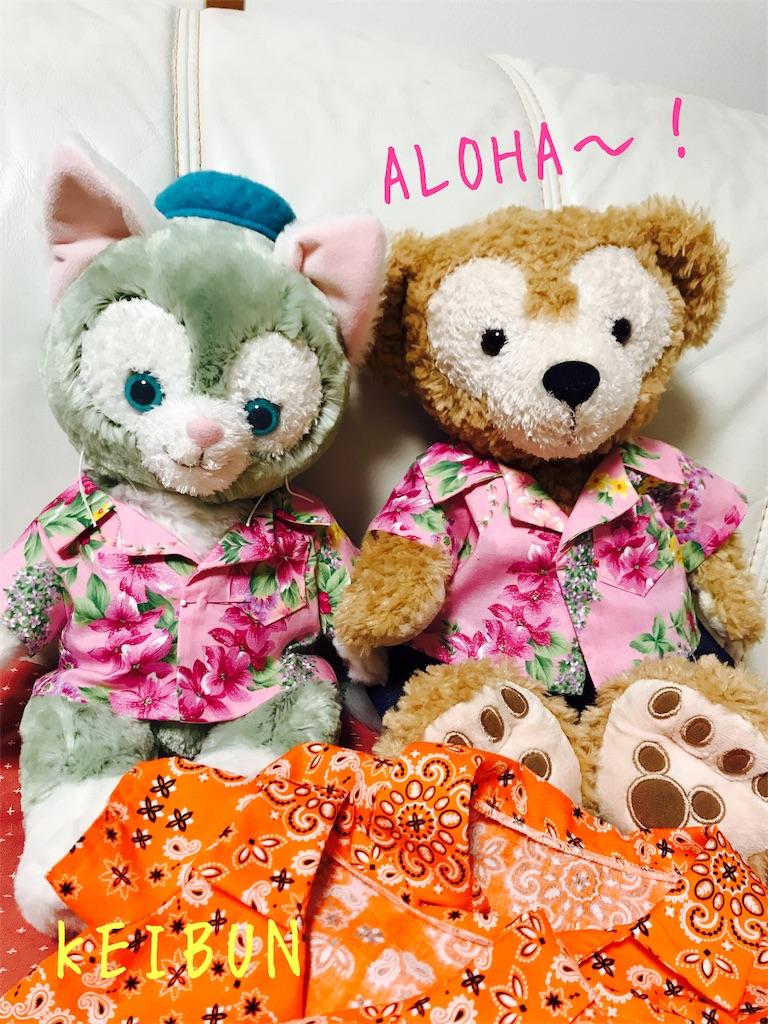 f:id:shopkeibun:20170607215652j:image