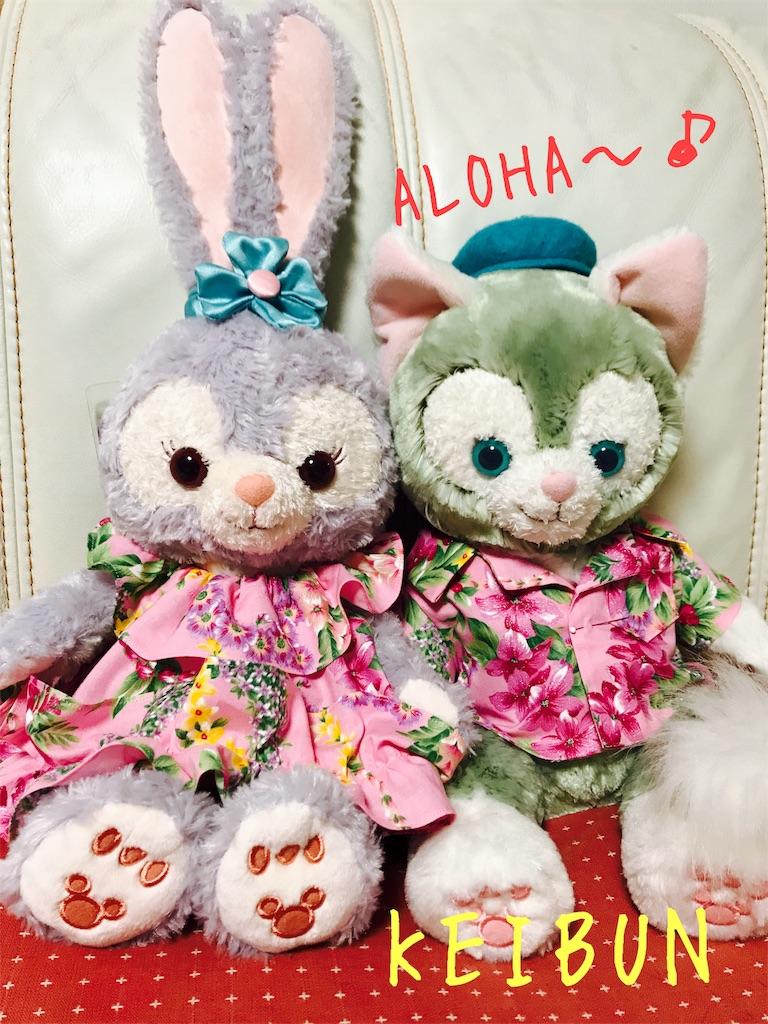 f:id:shopkeibun:20170610205019j:image