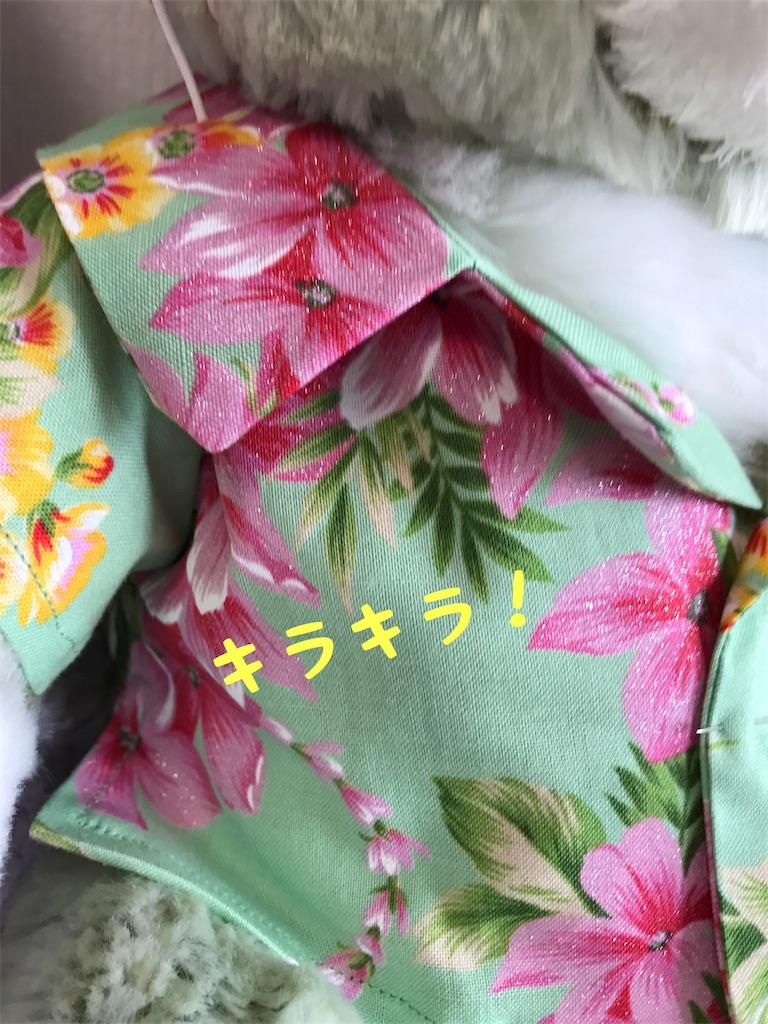 f:id:shopkeibun:20170621163118j:image