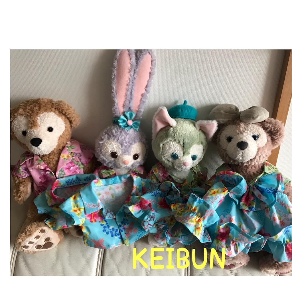 f:id:shopkeibun:20170622231951j:image