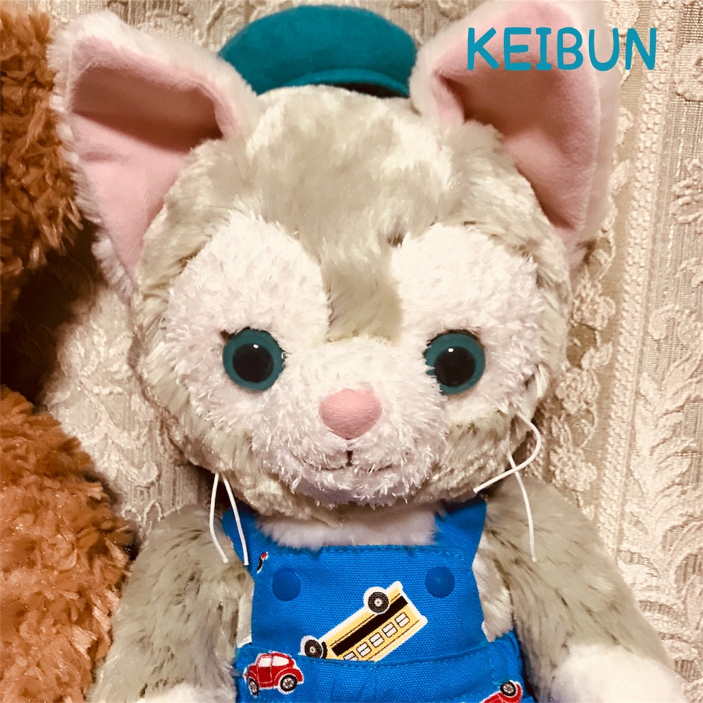 f:id:shopkeibun:20180304235159j:image