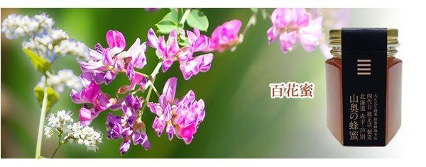 北海道山奥のハチミツ