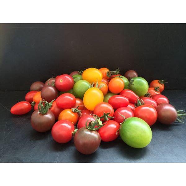 カラフルミックス ミニトマト