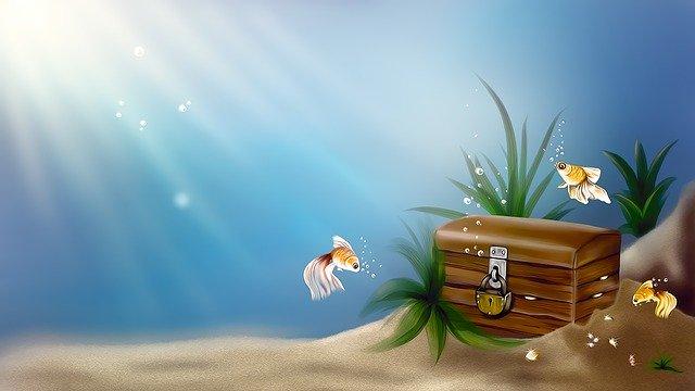 f:id:shoreblue:20200724073602j:plain