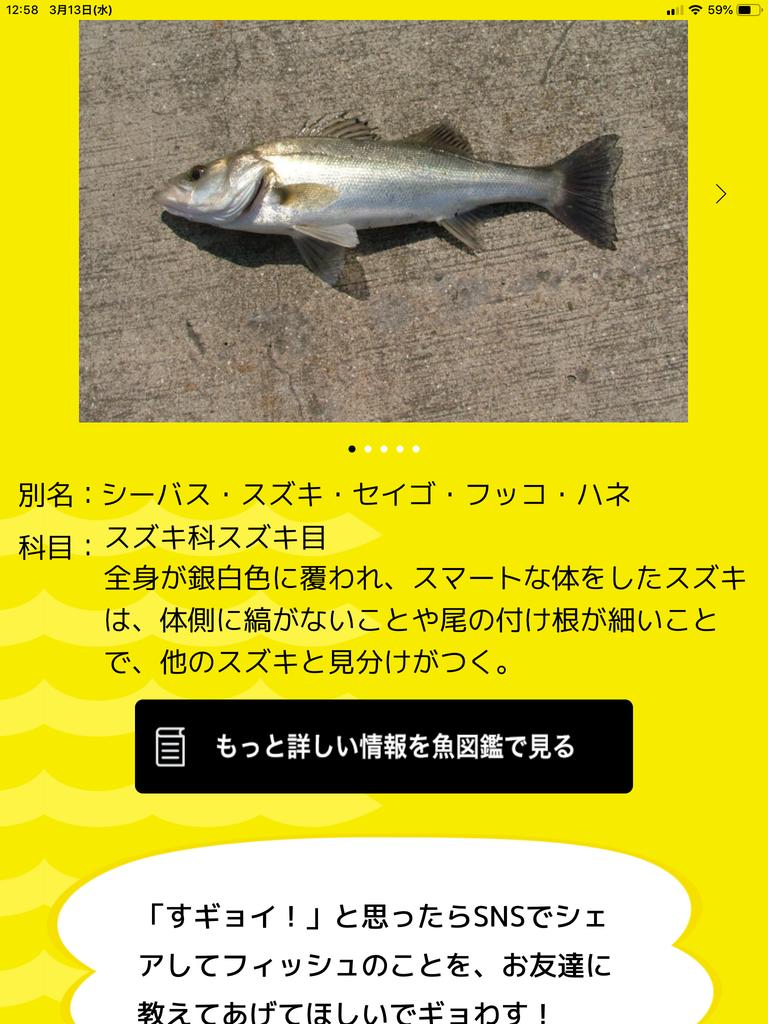 f:id:shoregomoku:20190313130401p:plain