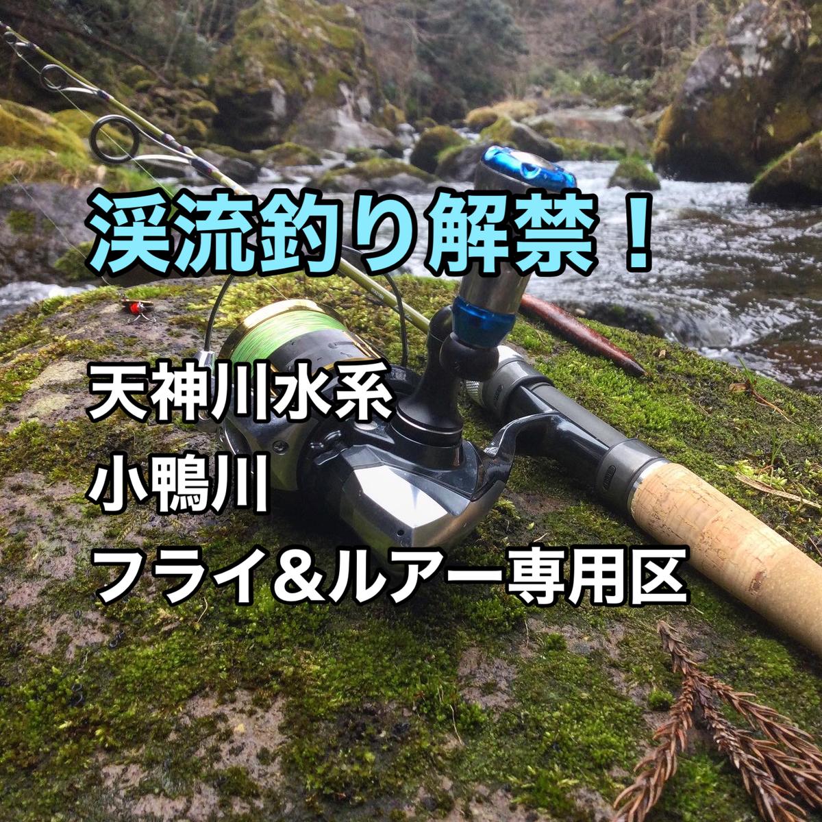 f:id:shoregomoku:20210311151629j:plain
