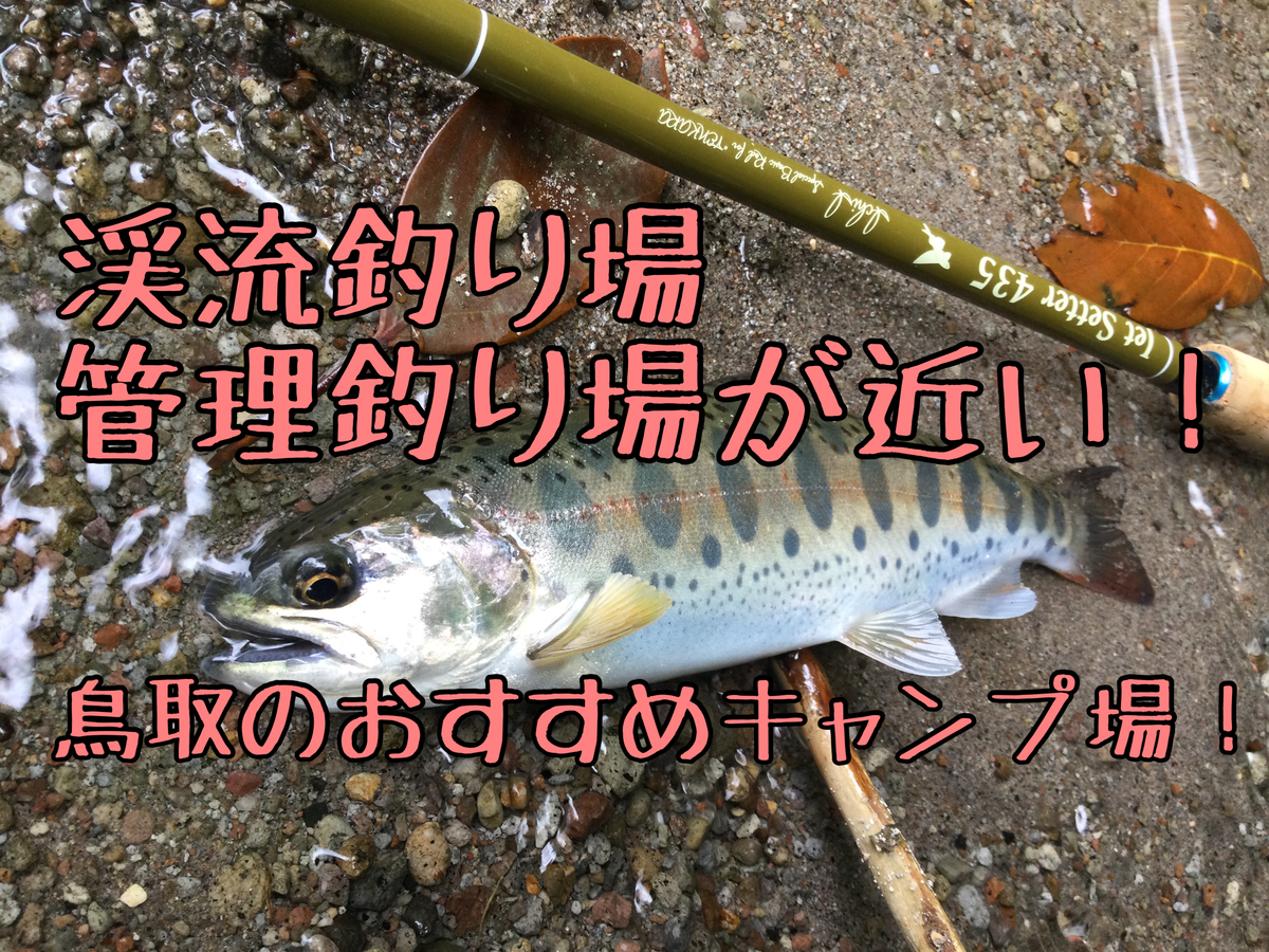 f:id:shoregomoku:20210520164523j:plain