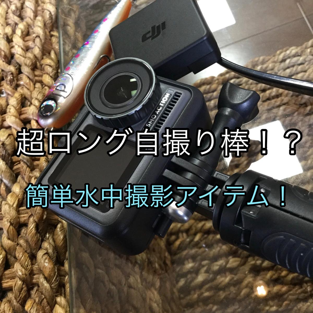 f:id:shoregomoku:20210530121035j:plain
