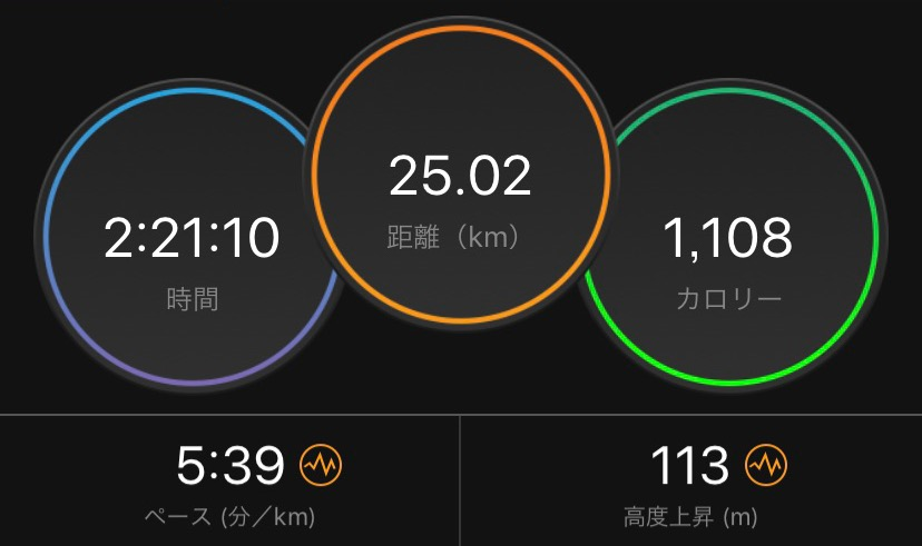 f:id:short-cut-to-runners-high:20191128203034j:plain