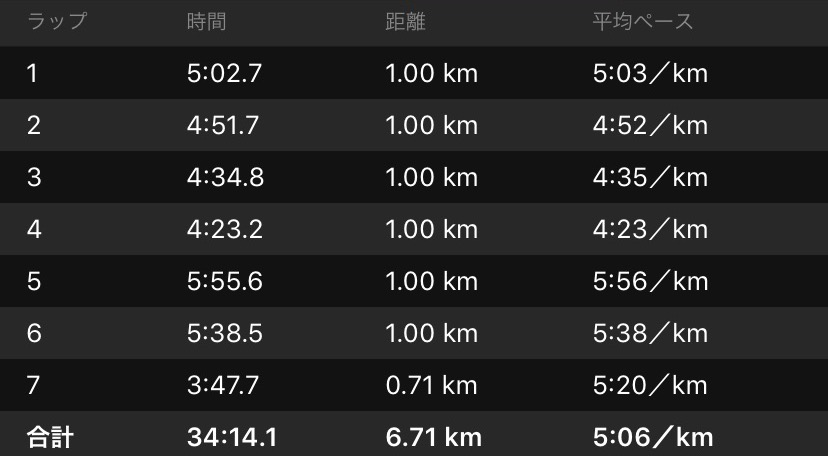 f:id:short-cut-to-runners-high:20200301174053j:plain