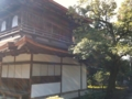 20101210110838