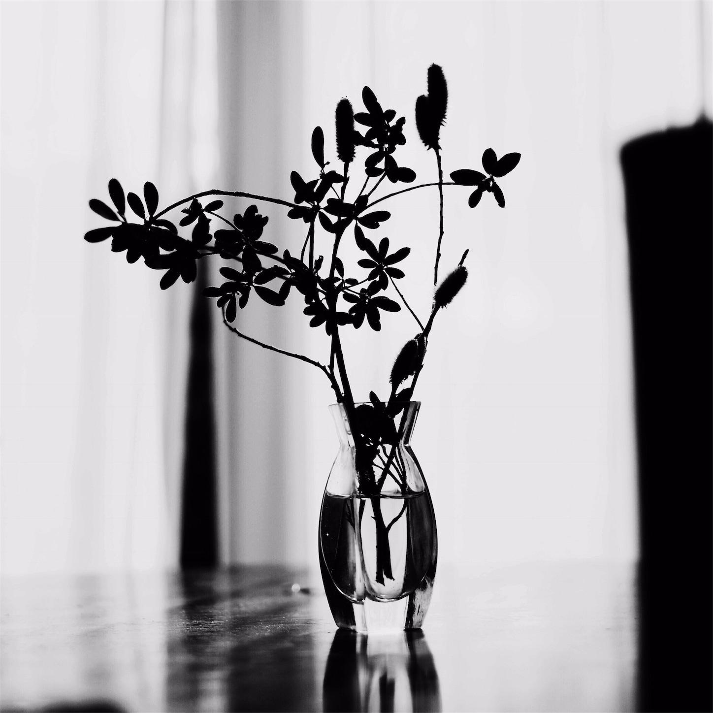 f:id:shota_saito:20170308222059j:image