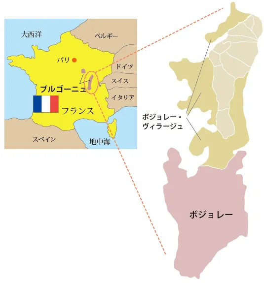 f:id:shougaikenkou120:20201015182417p:plain
