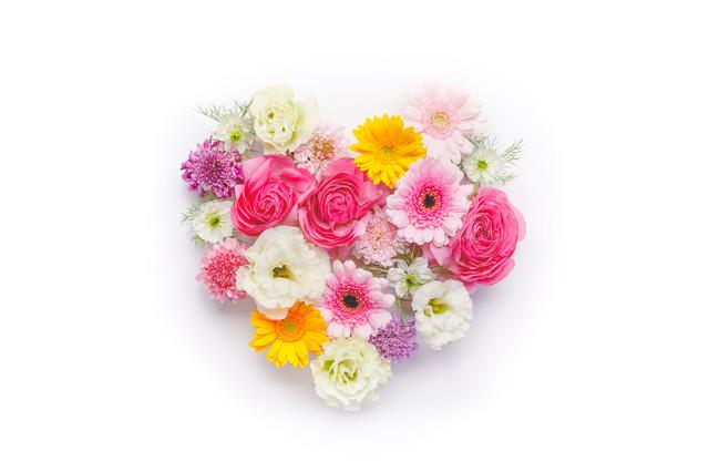ハート型の花