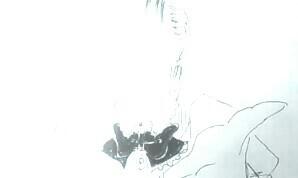 f:id:shouguntuyayoshi:20170515212622j:image