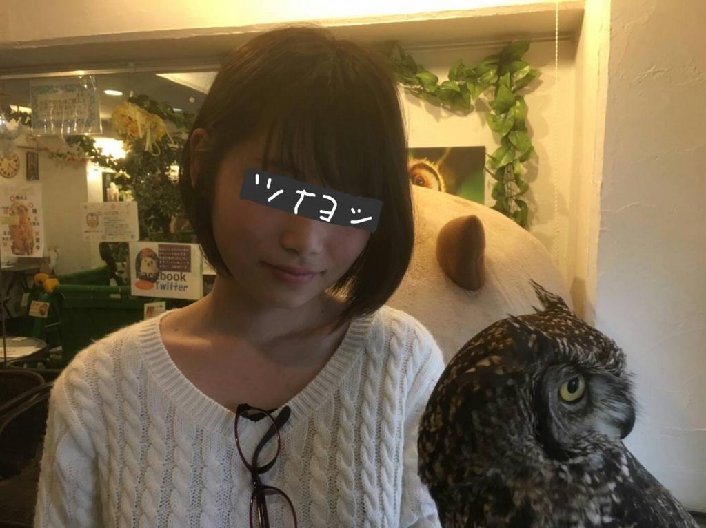 f:id:shouguntuyayoshi:20170520175133j:plain