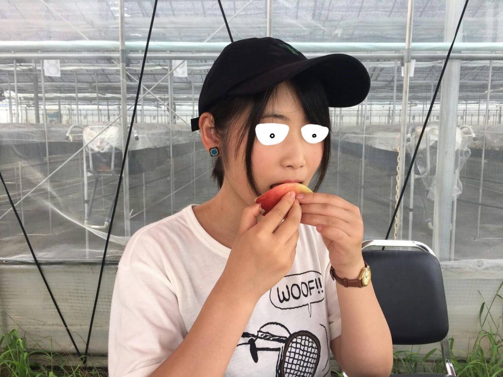 f:id:shouguntuyayoshi:20170828001946j:plain