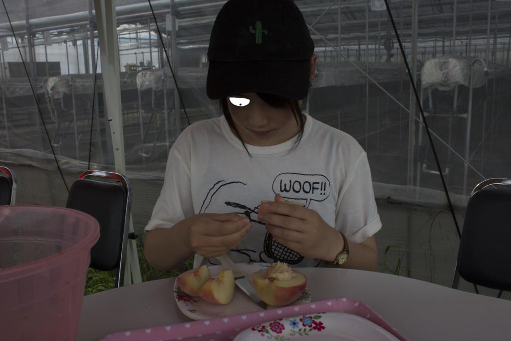 f:id:shouguntuyayoshi:20170828002717j:plain