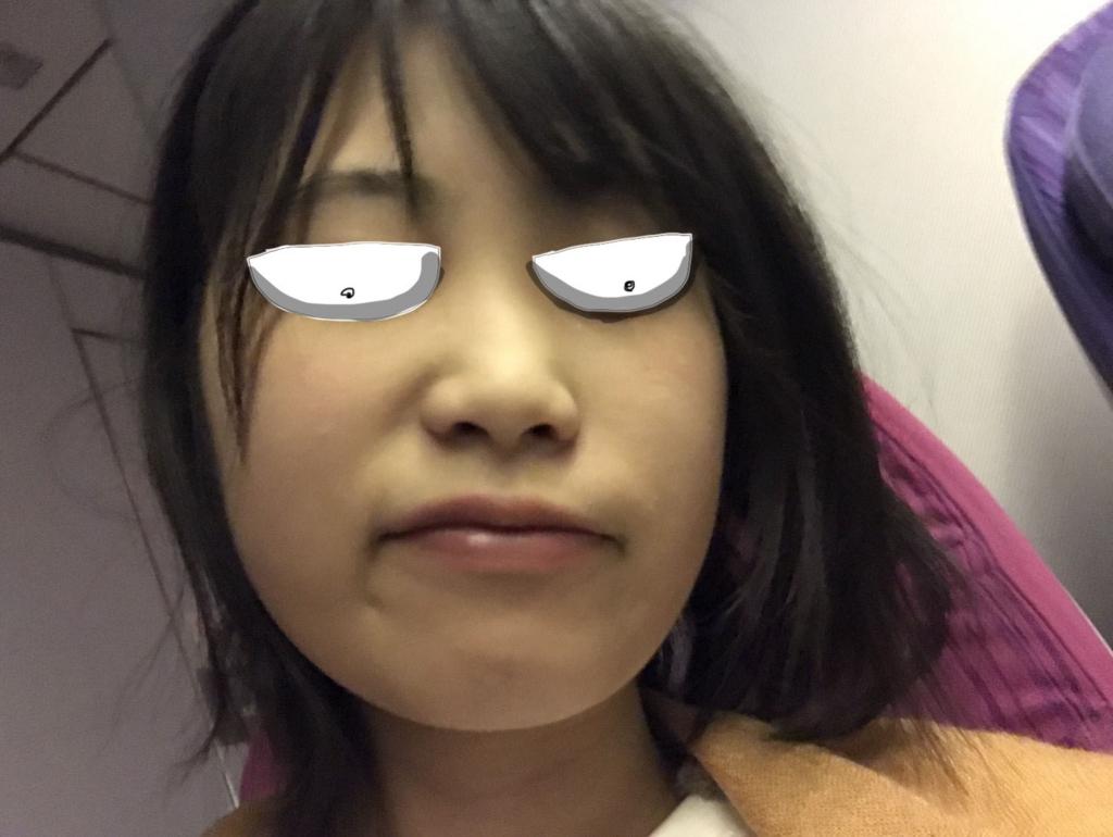 f:id:shouguntuyayoshi:20171029221312j:plain