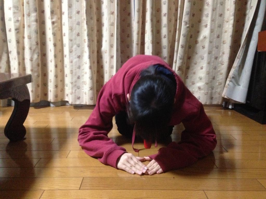 f:id:shouguntuyayoshi:20180217183110j:plain