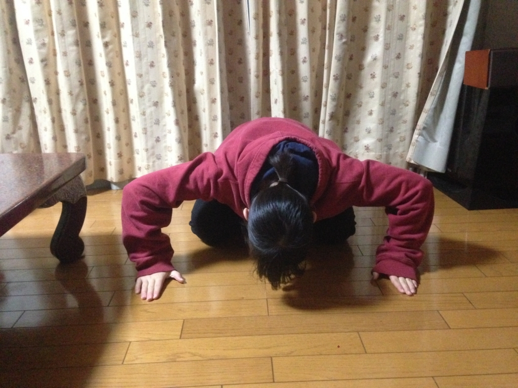 f:id:shouguntuyayoshi:20180217183655j:plain