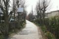 13線路っぽい緑道
