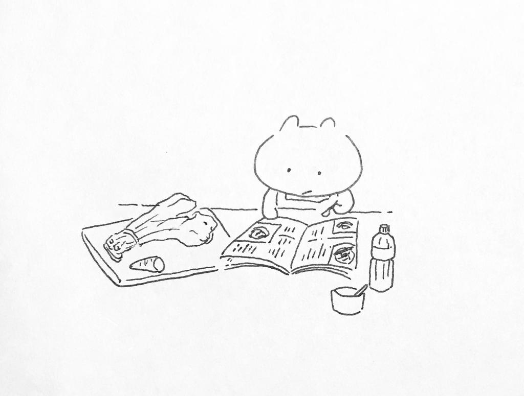 f:id:shouwano:20181227233410j:plain