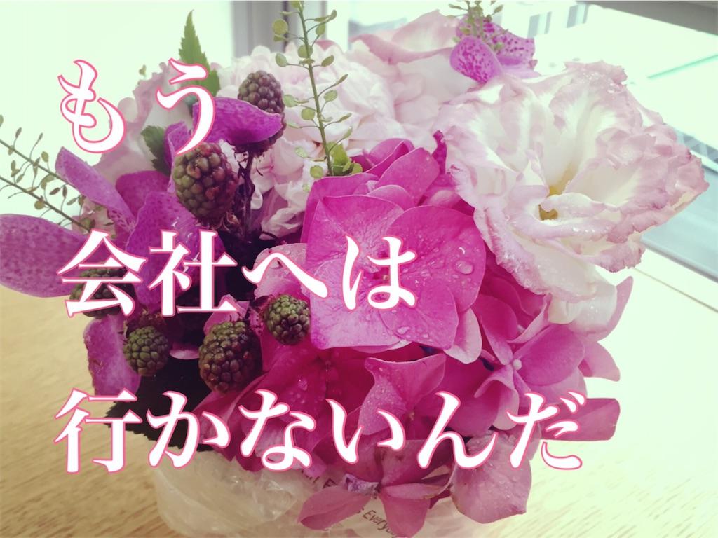 f:id:show-co:20160806005748j:image
