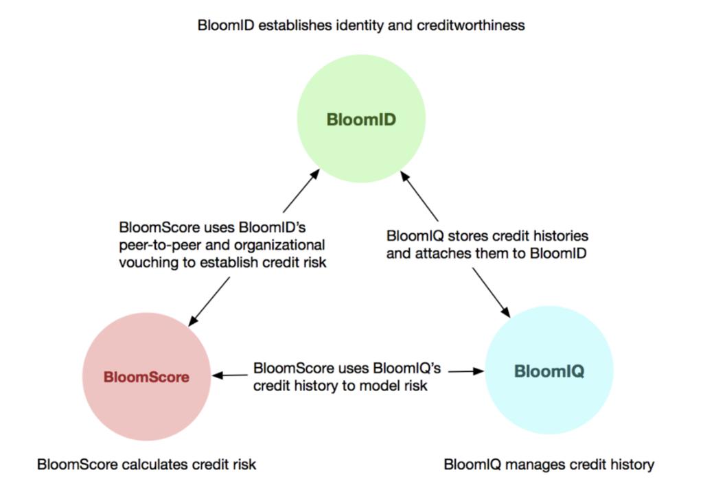 Bloomの3つのサービスの関係性