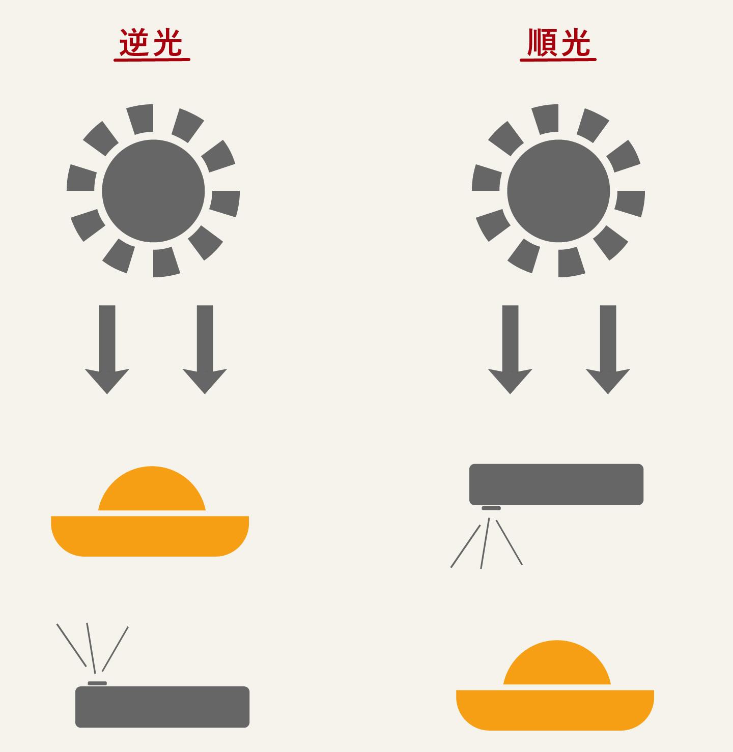 料理写真に大切な逆光
