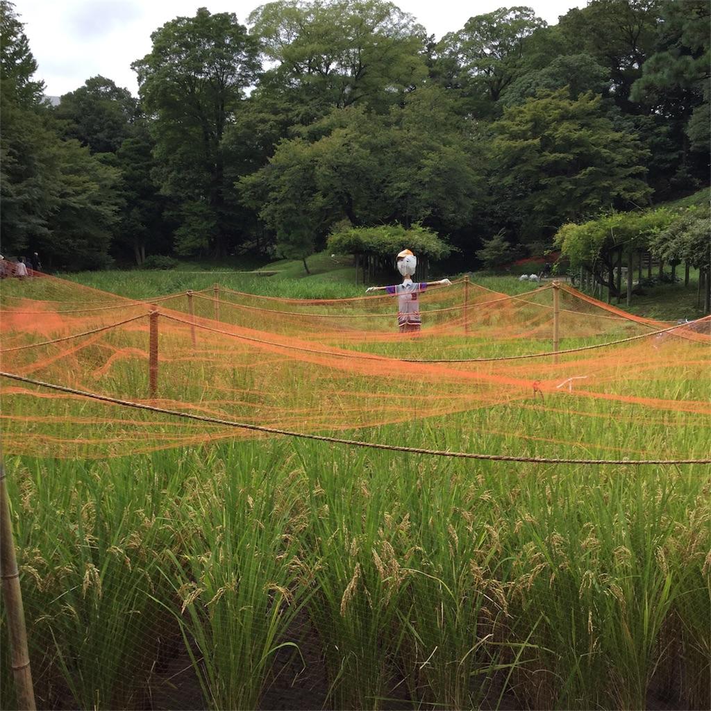 f:id:showtaro-aoki:20170927174028j:image